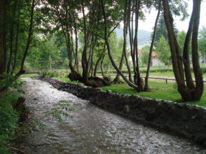 Посетите Митрово поље, омиљено излетиште Жупљана